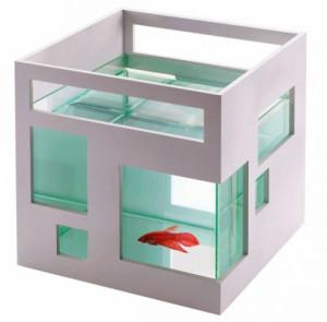 Фото креативного аквариума