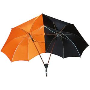Фото зонта для двоих