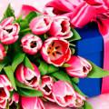 Фото тюльпанов и коробки с подарком
