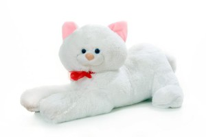 Фото плюшевого кота